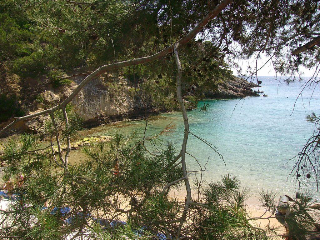 Itinerari costieri pineta